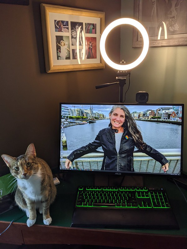 A ring light, behind my desktop monitor. Spice sits at my desk, looking up suspiciously.