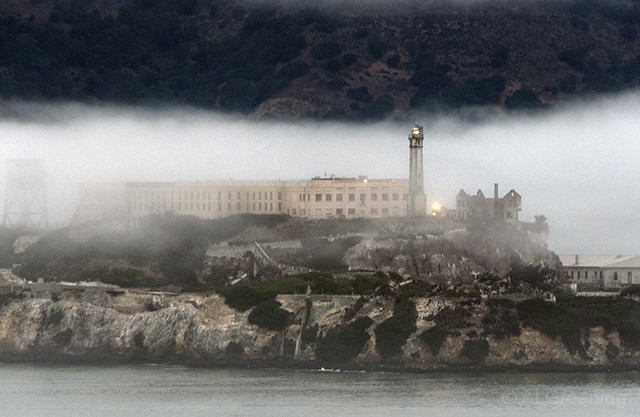 Foggy Morning, Alcatraz 119205n