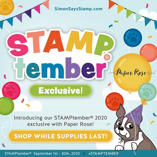 PAPER ROSE_STAMPtember 2020_exclusives