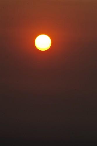 ashfilledsunrise firefueledsunrise sunrise atmosphericscene sept17thlasunrise nothealthycondition urbanscene lifeinlosangeles reminiscentofolafurellassonsweatherproject darkhuedsky polychromatic photojournalism photobyjoeyzanotti