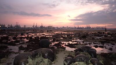Living shores of Cyrene at sunrise