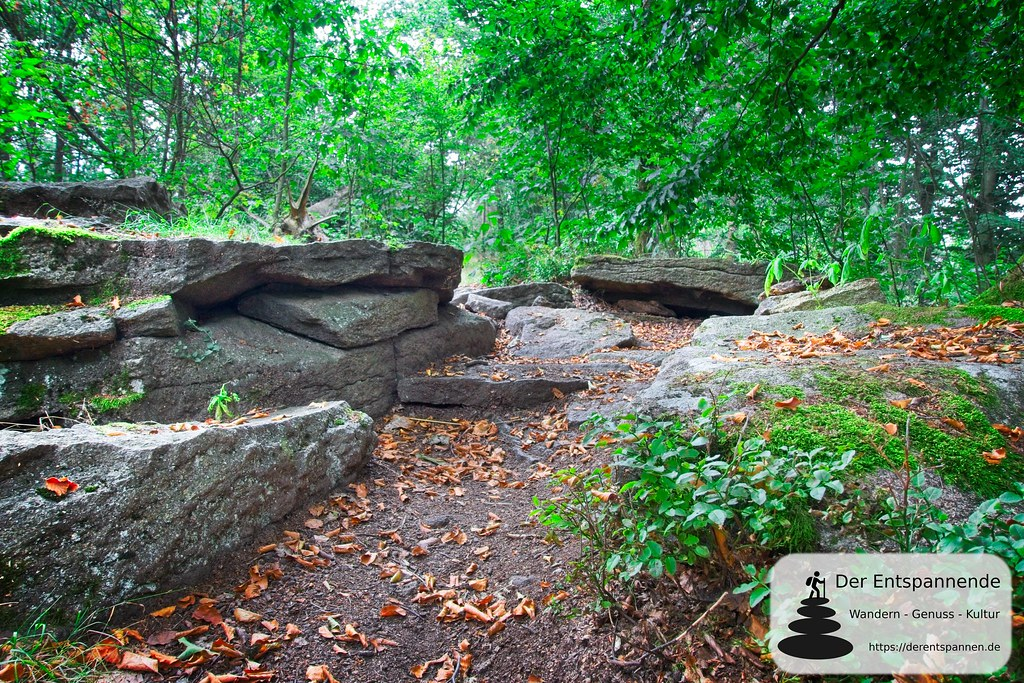 Waldpfad am Schmoritz