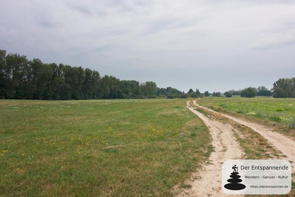 Einsam über Wiesen - auf der Via Sacra in Oberlausitz von Bautzen nach Cunewalde