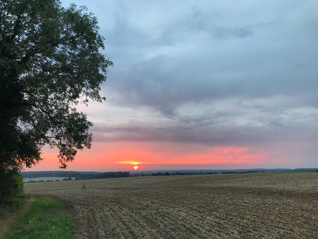 Ploughed Field Sunset