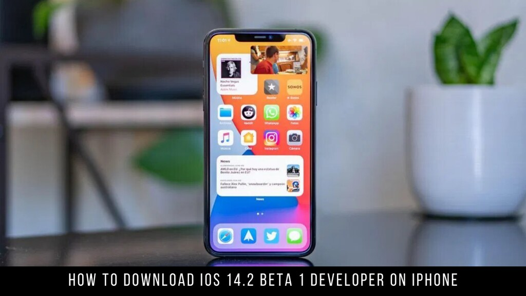 How to Download iOS 14.2 Beta 1 Developer on iPhone