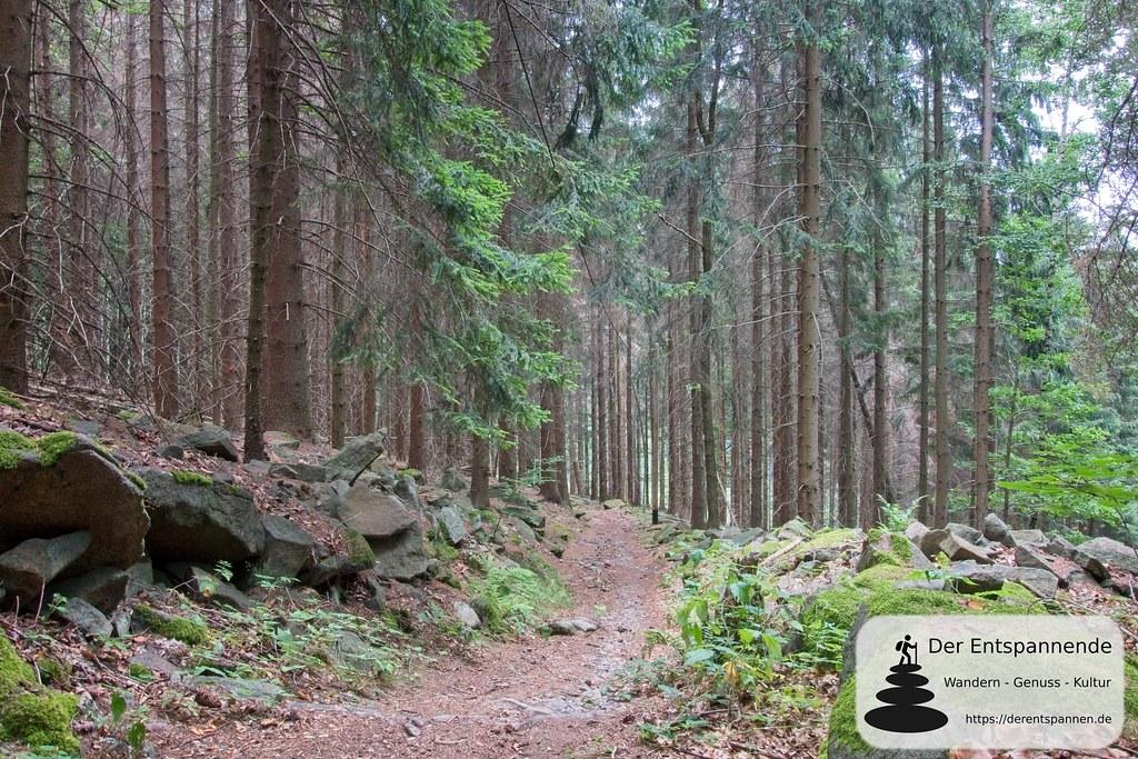 Schleifbergweg am Czorneboh