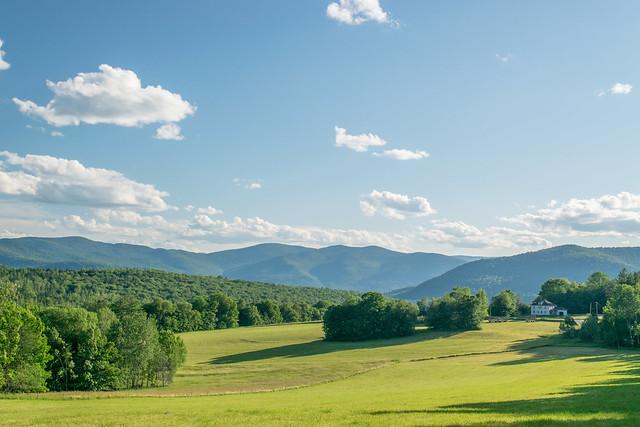 Vermont Hay Field