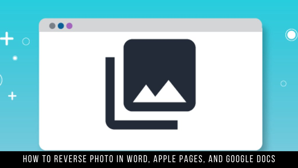 How to Reverse Photo in Word, Apple Pages, and Google Docs