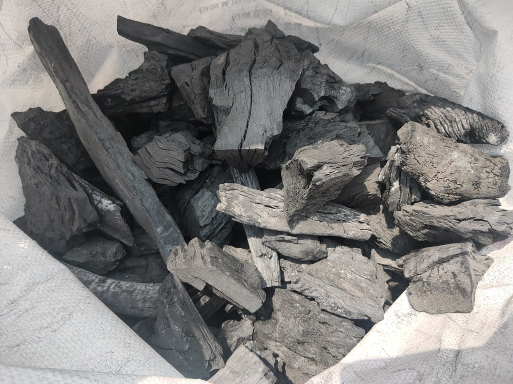 大樹木炭窯 (13)