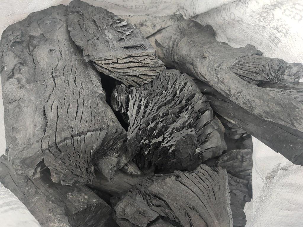 大樹木炭窯 (12)