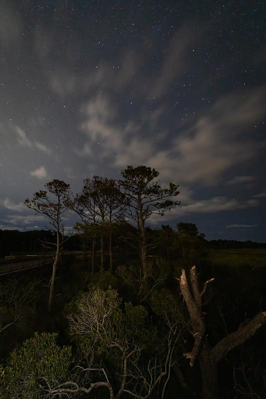 The Night Sky of Assateague National Seashore