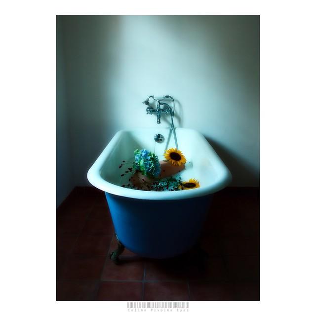Morgane dans la baignoire (3) . . .   #etudiantip #artmajeur #photographe #photo #creativeentrepreneur #destinationphotographer #photographer #femmephotographe #artistsupportpledge #prodiart #baignoire #ado #bain #lifestyle
