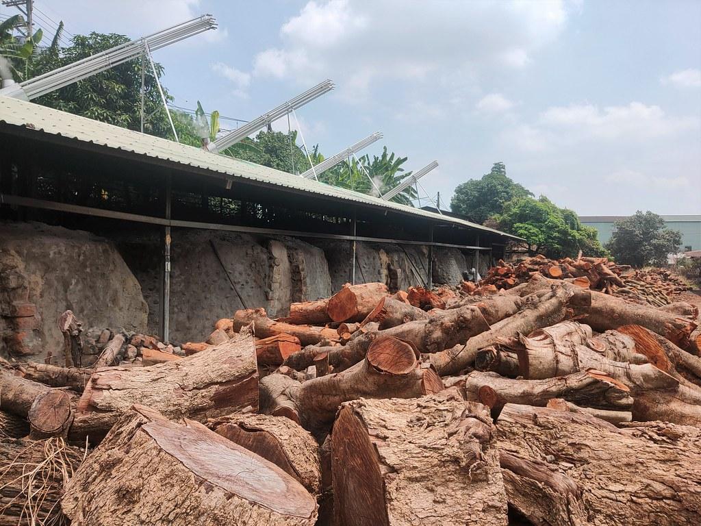大樹木炭窯 (3)