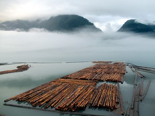 Tahumming Log Rafts | by D-Stanley