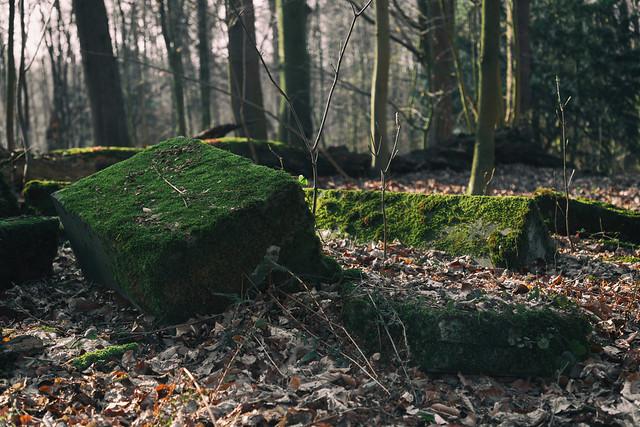 Mausoleums-Ruine im Wald