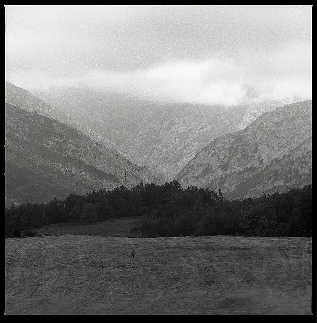 Hasselblad 2000FCW + Ilford FP4+