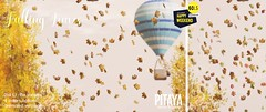 Pitaya Falling Leaves @ Happy Weekend