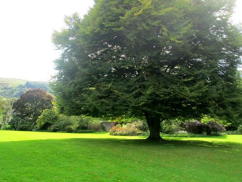 Falkland Palace Gardens, Fife, Scotland