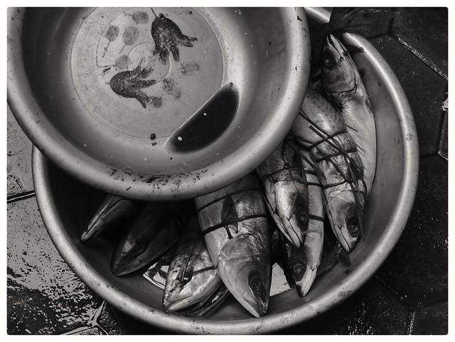Nature morte, Kèp, Cambodge,  août 2020. Still life, Kep, Cambodia, August 2020.