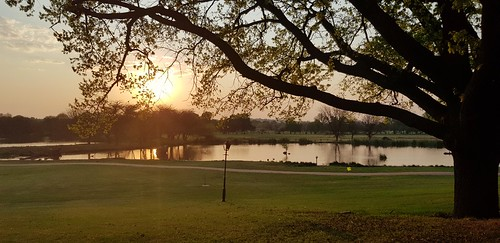 irenecountrylodge pretoria southafrica irene country lodge south africa lake sunset lakesunset lakesunsets sunsets water lakes dam dams green tree trees nature outdoors greenery grass