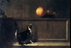 Peter Van Slingeland, Chat guettant un oiseau (une souris ?) / Musée des Beaux-Arts de Rennes