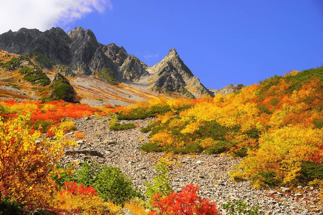 【北アルプス】秋の涸沢 紅葉と穂高連峰の岩峰
