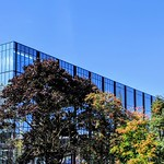 UCLan building over the treetops