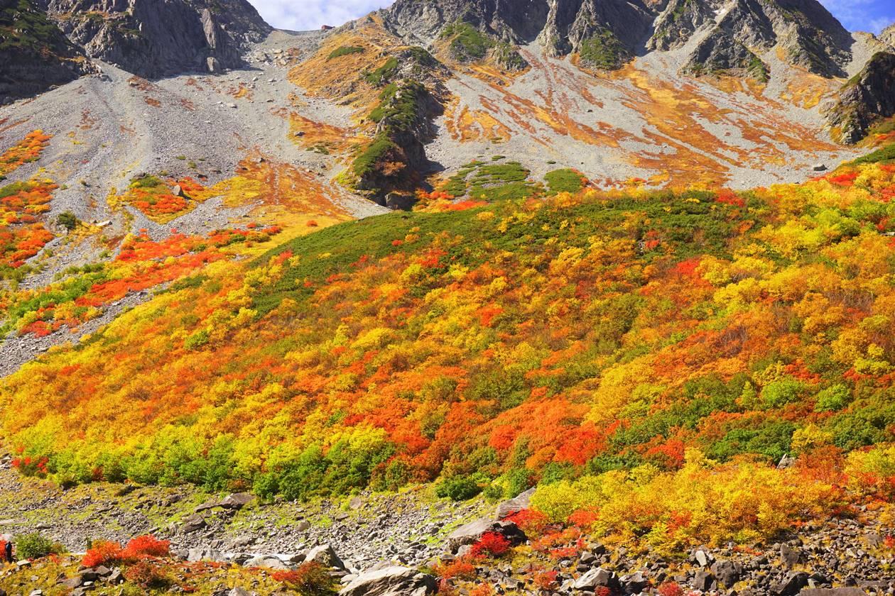 【北アルプス】秋の涸沢の紅葉