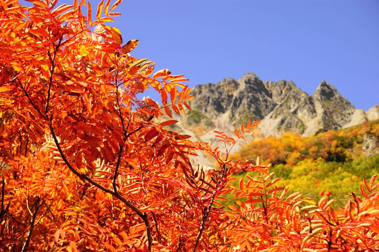 【北アルプス】涸沢の紅葉
