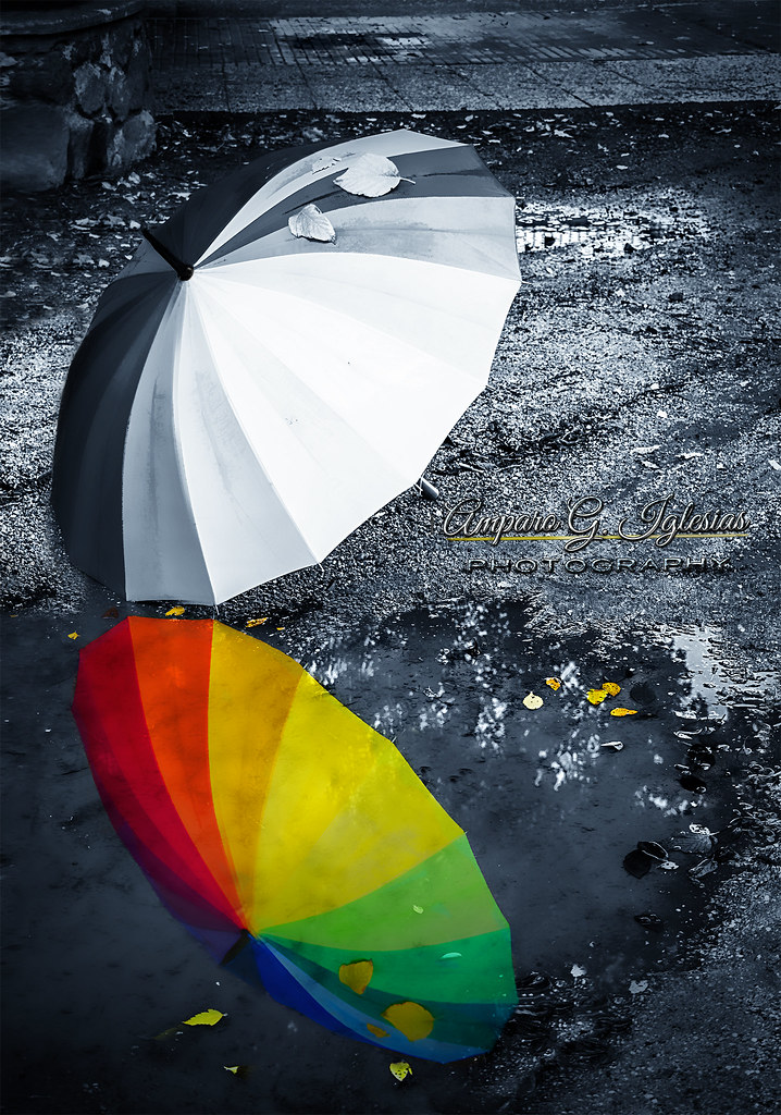 Si la vida es gris que tu reflejo sea en color - Amparo García Iglesias