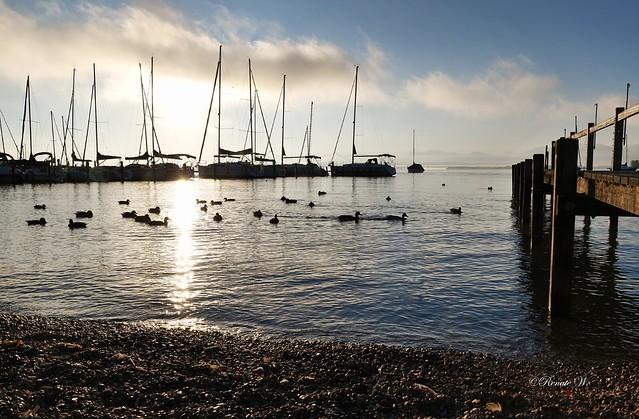 Die Ruhe am See!