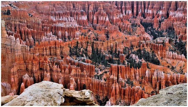 Amerian West  -  Hoodoos  //  Bryce Canyon - Utah