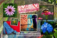 Love Montage