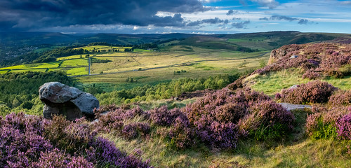 heather peakdistrict derbyshire millstoneedge august latesummer lateevening sunset