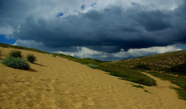 Les dunes de Sauveterre