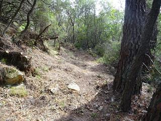 Le chemin vers la cascade de Frassiccia