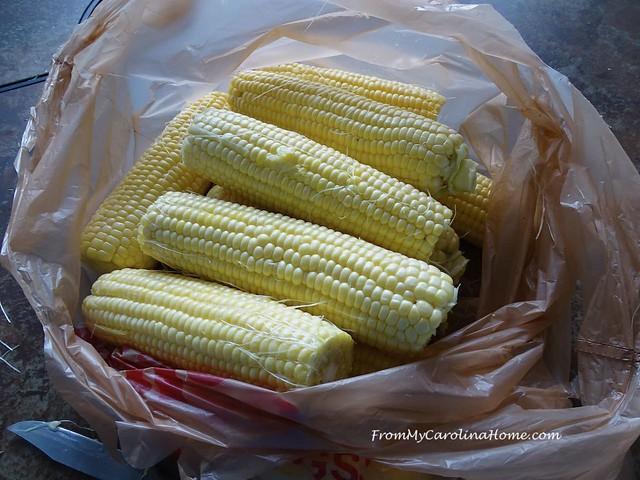 Harvest Corn at FromMyCarolinaHome.com