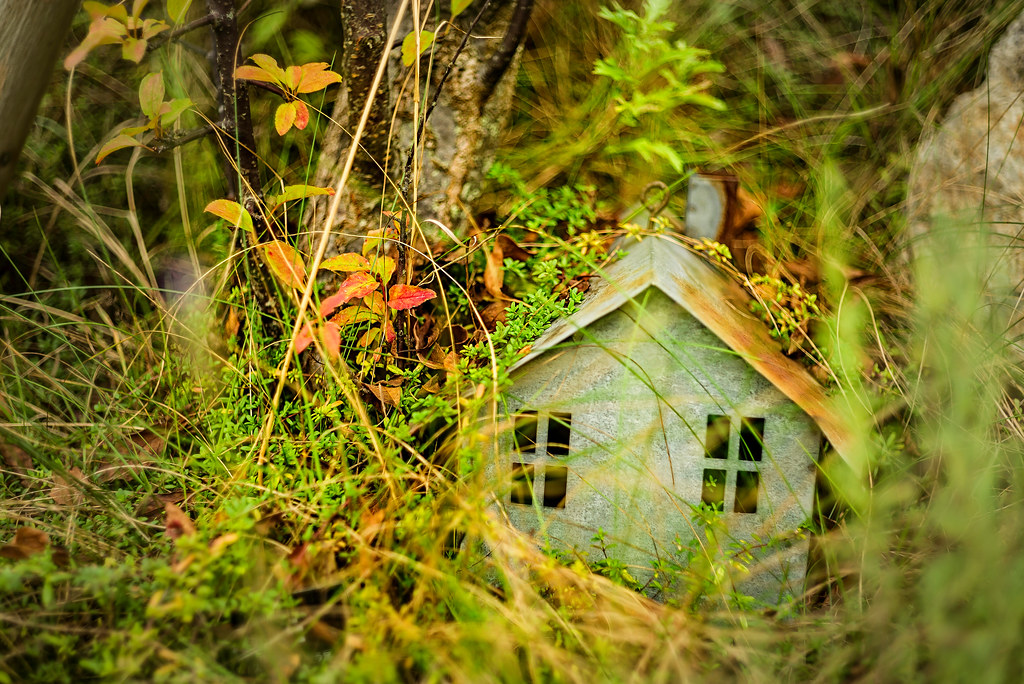 A House of Dwarfs