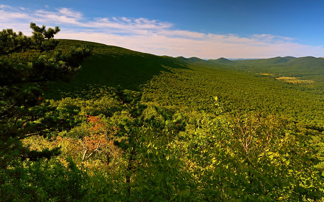 Halfmoon Mountain: Knobs