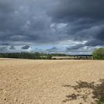 23. August 2020 - 10:32 - Felder bei Mühlhausen / Würm