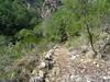 L'ancien chemin restauré avec ses soutènements entre la plate-forme du téléphérique et la cascade de Frassiccia