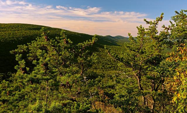 Halfmoon Mountain: Sunshine on Mill Mountain