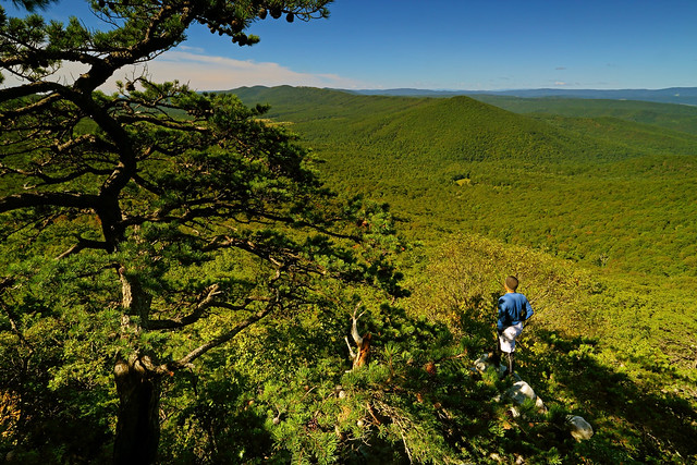 Halfmoon Mountain: Checking out the Trout Run Valley