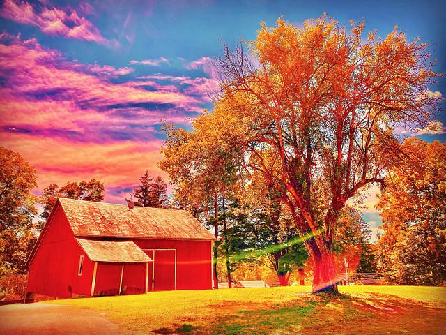 Autumn Signals With Spirit Lights