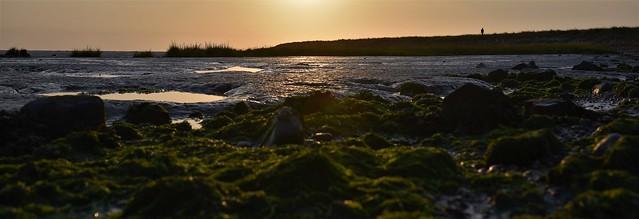 kilnsea sunset over the humber