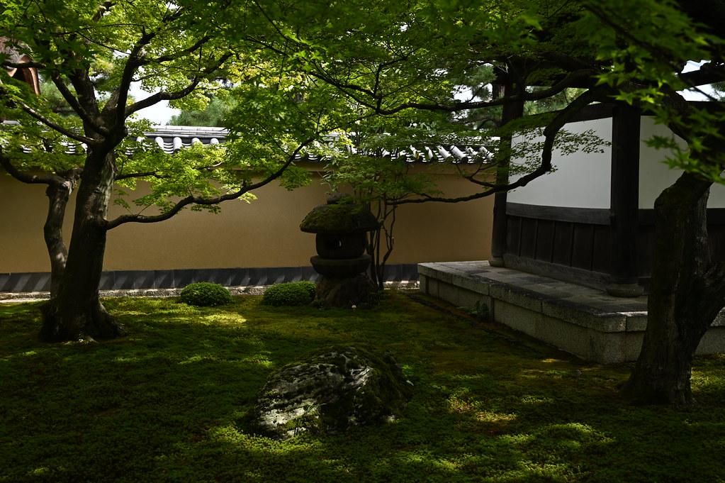 大徳寺 黄梅院