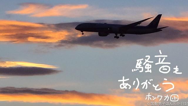 小僧楽書:背景は夕焼けと着陸寸前機(以上4点撮影:筆者)
