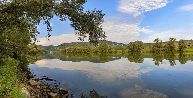 *Brauneberg @ Moselle view*