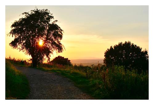 robindemel sunset onthehill september19th2020