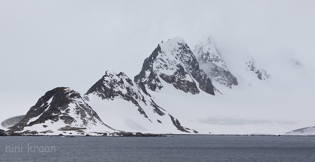 Snow and fog on Laurie island
